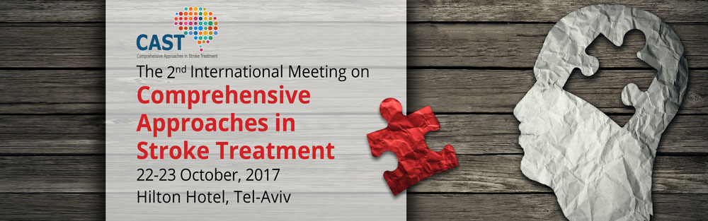 The Comprehensive Approaches in Stroke Treatment Meeting